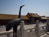 beijingforbiddencity-1050011_0