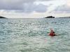 swimseals-04364