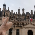 Where is Piggy in the Loire Valley, France?