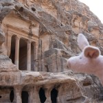 Where is Piggy in Jordan?