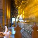 Where is Piggy in Thailand?