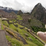 Where is Piggy in Peru?