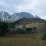 CapetownWine-1100202