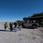 Kalahari-1100721