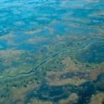 OkavangoDelta-0536