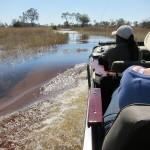 OkavangoDelta-0560