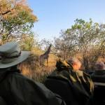 OkavangoDelta-0621