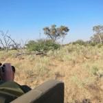 OkavangoDelta-0657