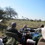 OkavangoDelta-0687