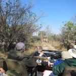 OkavangoDelta-0695