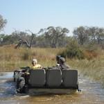 OkavangoDelta-0702