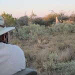 OkavangoDelta-0772