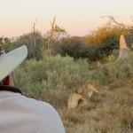 OkavangoDelta-0777