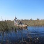 OkavangoDelta-0918