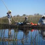 OkavangoDelta-0941