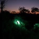 OkavangoDelta-1110496