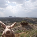 Where is Piggy in Tanzania?