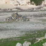 RobbenIsland-0142