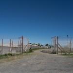 RobbenIsland-1100080