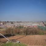 Soweto-1110689