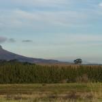 Stellenbosch-1090750