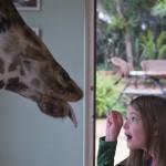 GiraffeManor_Kenya-1130658
