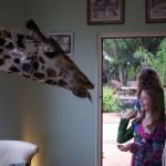 GiraffeManor_Kenya-1130660