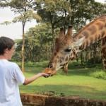 GiraffeManor_Kenya-1962