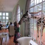 GiraffeManor_Kenya-1974