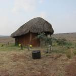 LewaDowns_Kenya-1470