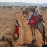LewaDowns_Kenya-1636