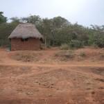 NgoroNgoroCrater-1120261