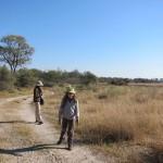 OkavangoDelta-0814