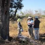 OkavangoDelta-0932