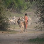 Sarara_Kenya-1130206