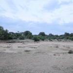 Sarara_Kenya-1727