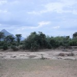 Sarara_Kenya-1728