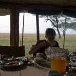 Serengeti-1120631