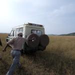 Serengeti-1120716