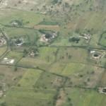 Serengeti-1298