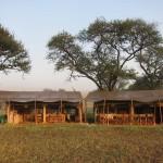 Serengeti-1418