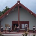 maoricover-1000736