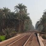 modernegypt-1069814